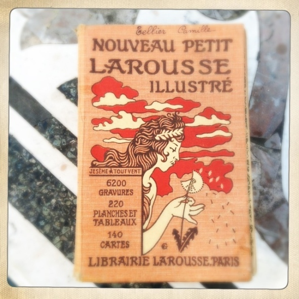 Petit larousse cover