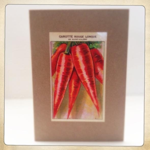 carotte rouge longue saint