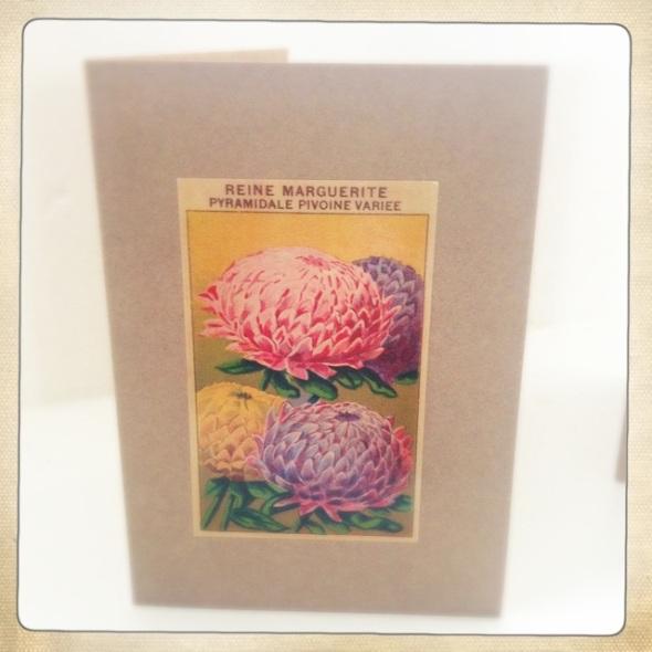 reine marguerite folded card