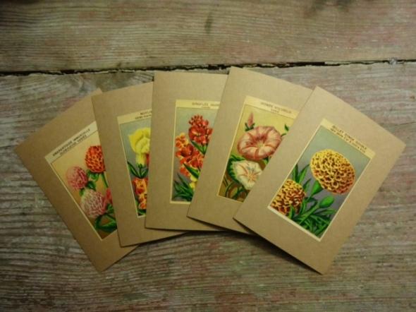 Flower notelets